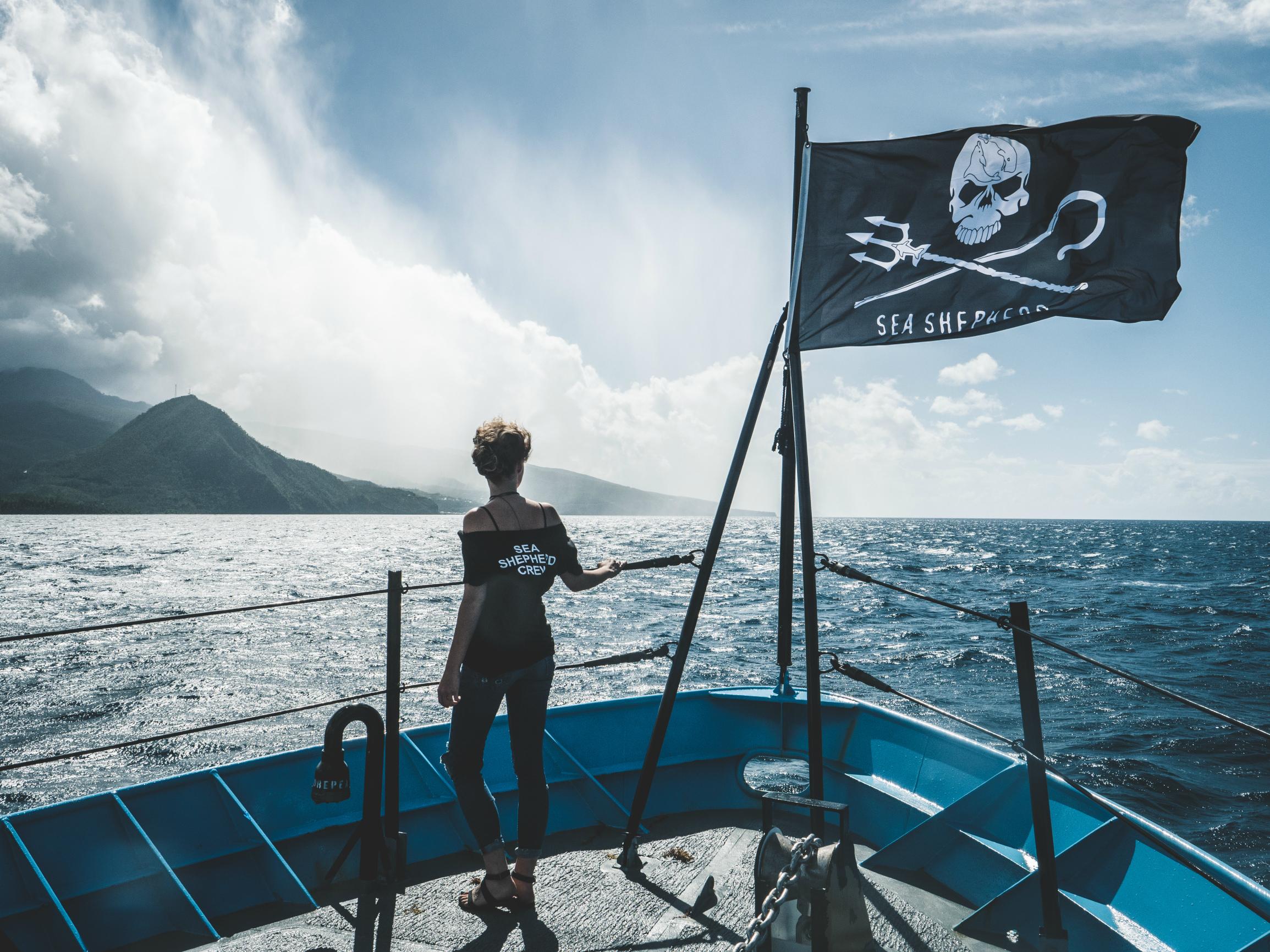 Общество охраны морской фауны