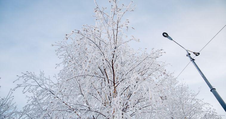 Погода бердянск на 10 дней температура воды